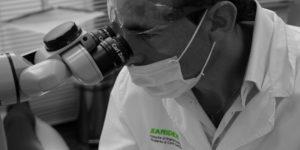 strumenti tecnologici sanident microscopio operatorio