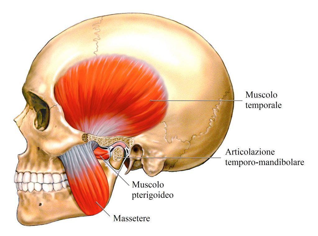 Dolore alla schiena e malocclusione dentale: come risolvere