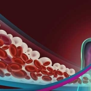 terapia anticoagulante