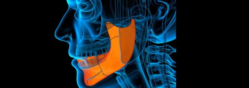 posizione della mandibola